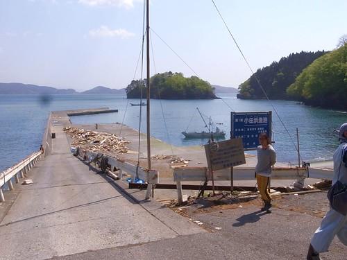 小田浜漁港でボランティア (crop)