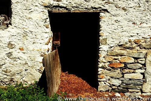 Neue Hütte 0_2009 08 31_2710