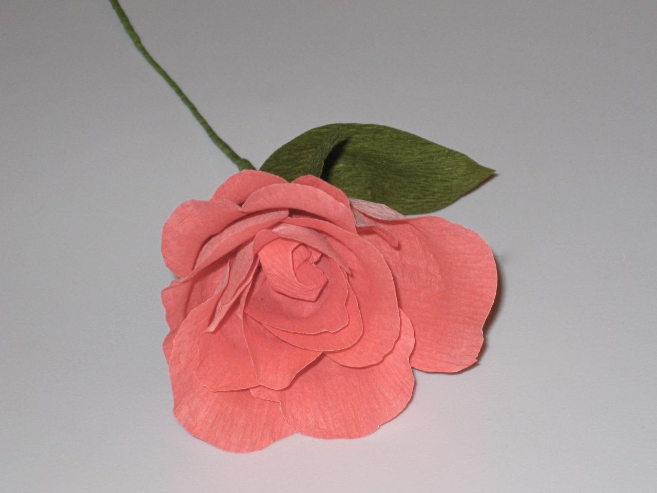 Duplex Paper Rose Flower Yelomphonecompany