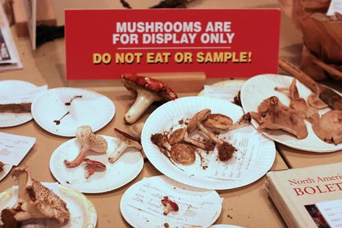 "NJ Mycological Association ""Fungus Fest"" by you."