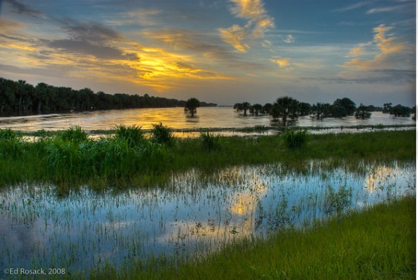 Lake Jesup flood waters after Tropical Storm Fay
