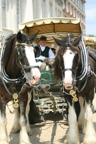 carriage ride at Hampton Court Palace