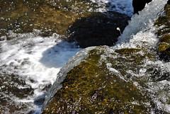 Aysgarth Falls 6
