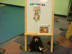 Library Bear gets ready for Winter.
