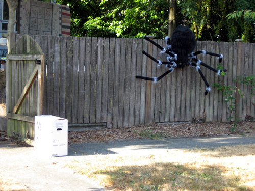 Spider-guarded yard sale