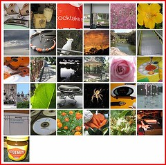 edtech365/2009 January Compilation