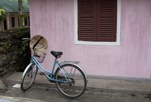 Vietnam Bike on Pink