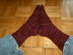 Redwood Forest Socks