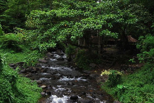 """Like dreams, small creeks grow into mighty rivers."""