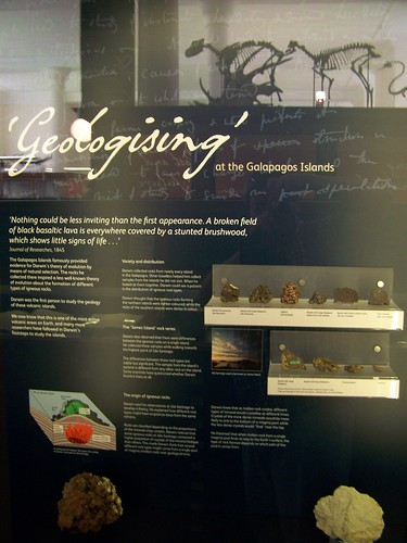 Geologising at the Galapagos Islands