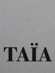 Abdellah Taïa, L'esercito della salvezza, ISBN 2009; Grafica di Alice Beniero, frontespizio (part.), 2