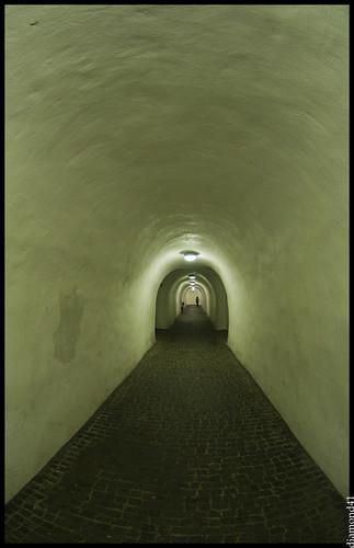 Neuschwanstein ( Castillo rey loco ). (by diamond41)