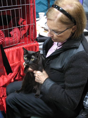 Cat Owner and her Burmese