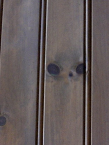 """Face"" in the paneling"