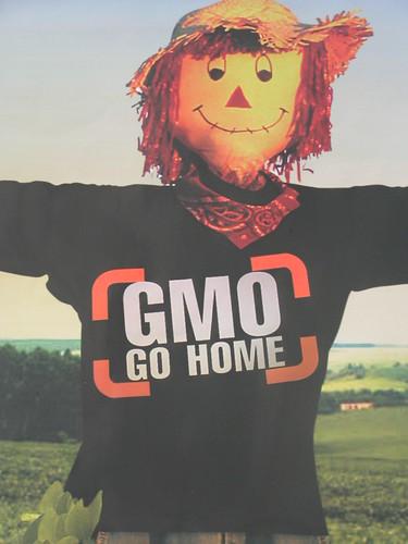 OGMs vão para casa by Cintia Barenho por você.
