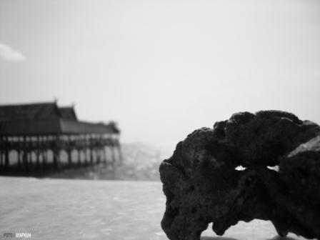 batu karang.. ^^