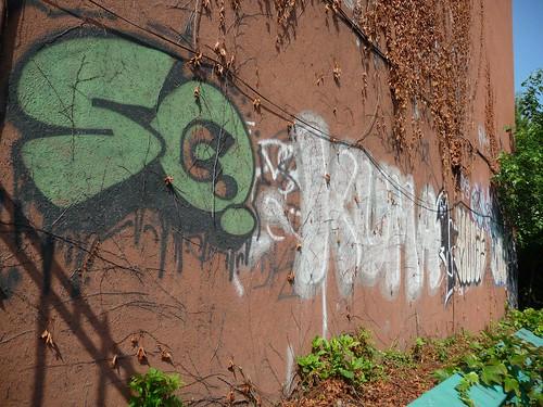 ivy-graffiti7