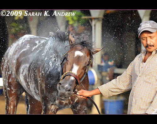 Rachel Alexandra and Juan Gonzales: Shampoo for Two
