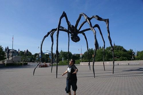 Spider attack @ Ottawa
