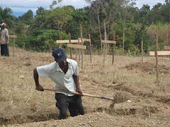 Construction of Maternity Ward & Residence in Marmont January 2009