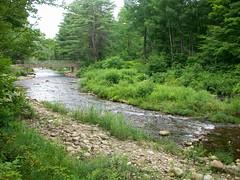Otter Brook
