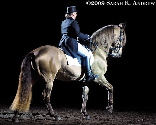 Jennie Jackson and Tennessee Walking Horse stallion Champagne Watchout perform a gaited dressage freestyle