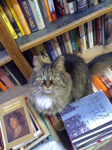 Westcott Books_0196
