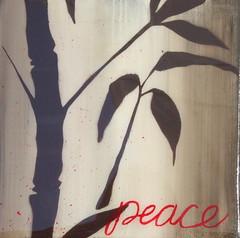 Peace III (7x7)