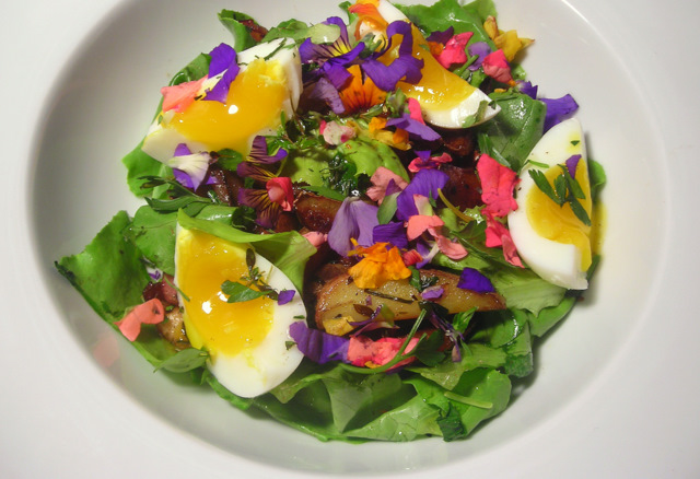 Oyster mushroom, bacon and heirloom potato salad, with fresh wild turkey eggs and pea shoot flowers, and shallot-herb vinaigrette