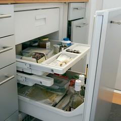 Auszugs-Kühlschrank