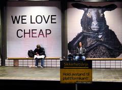 Cheap_01