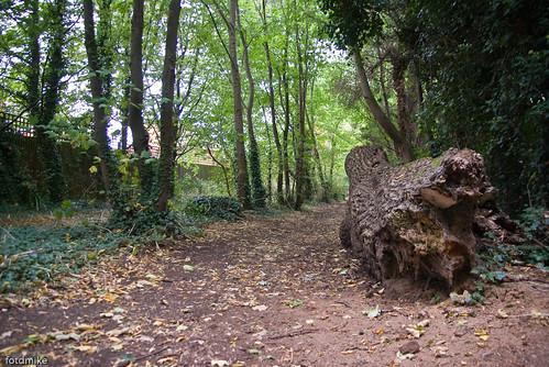 Bedford's hidden places _G109561