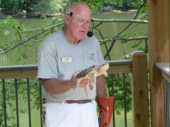 Virginia Living Museum - Volunteer with Turtle