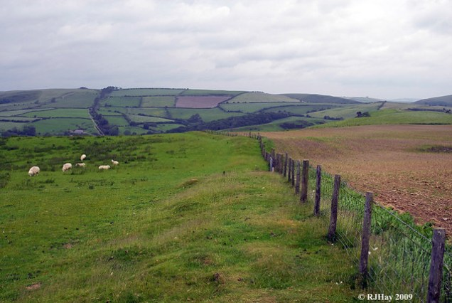 Fence line at the to of a hill