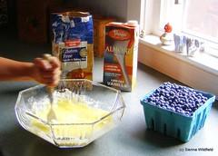 Gluten-free Blueberry Cake (Photo credit: Sienna Wildfield)