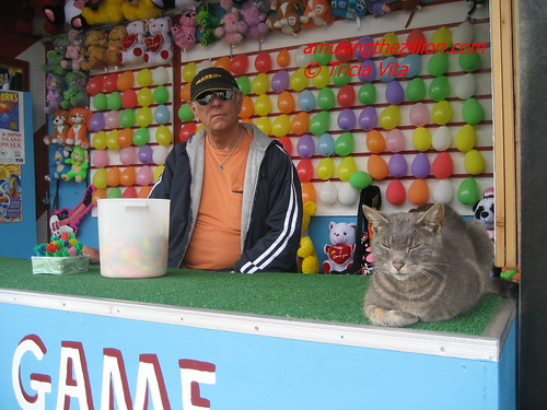 Target & Jimmy Waiting for Customers. Photo © Tricia Vita/me-myself-i via flickr