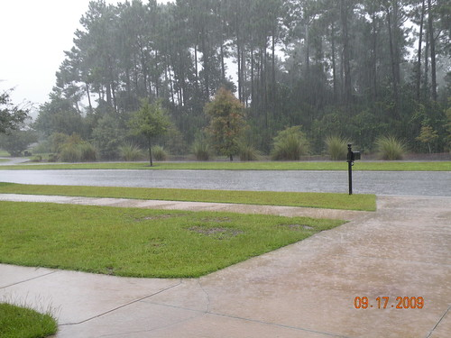 Buckets of rain poured down on us this week...