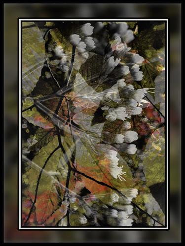 Shades of Early Autumn (c) 2009, Lynne Medsker