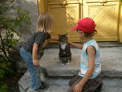 A cat allows two children to pet him/her