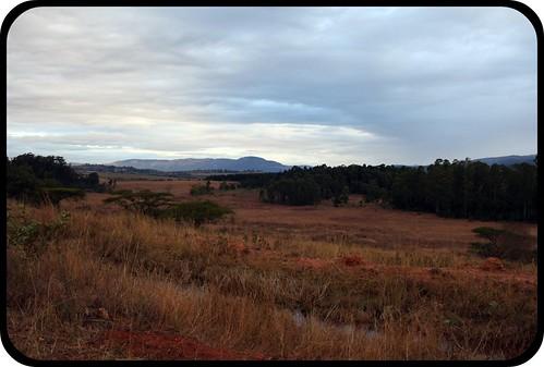 Hills of Swaziland