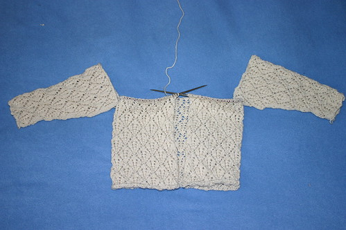 Reid cardi progress