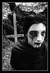 Anarcho veggie black metal is rising