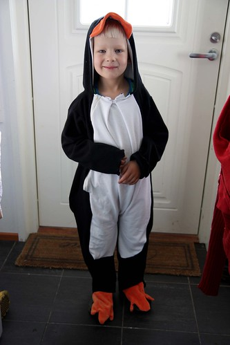 Niilo the Penguin
