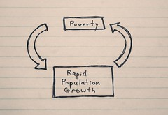 The Population Growth Cycle
