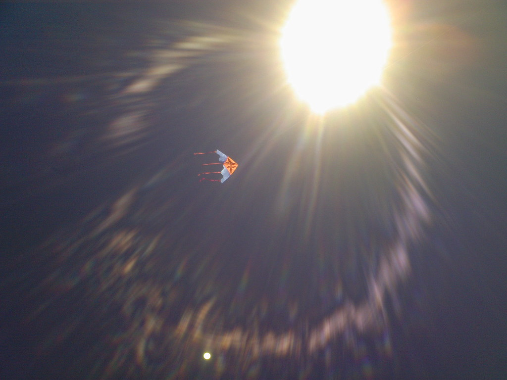 A kite, in a sunny day in the sand