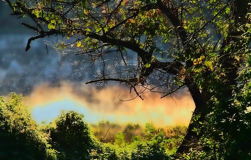 Burning the Mist