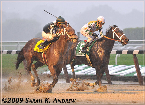 Kodiak Kowboy and Fabulous Strike in the Vosburgh