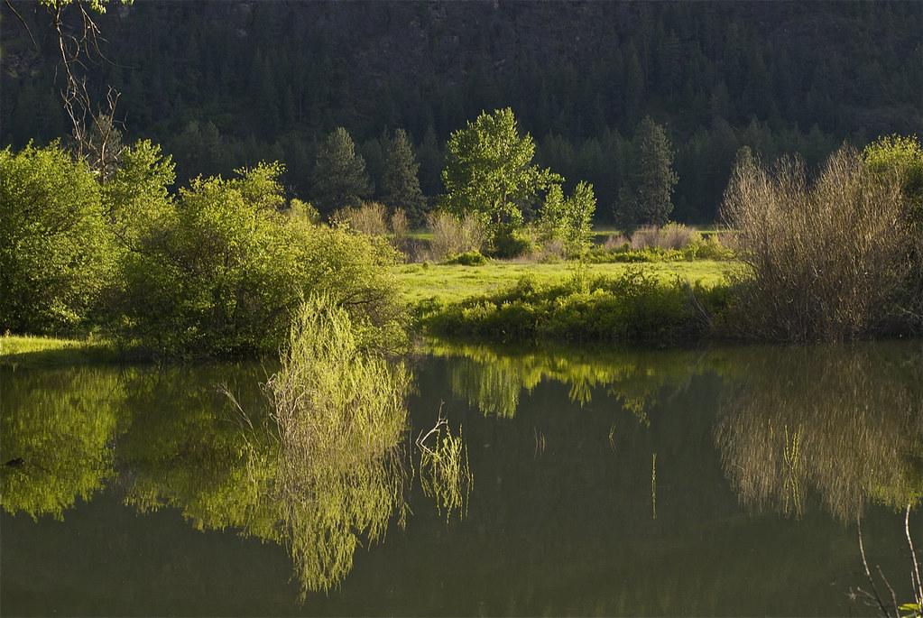 Clark Fork near Paradise