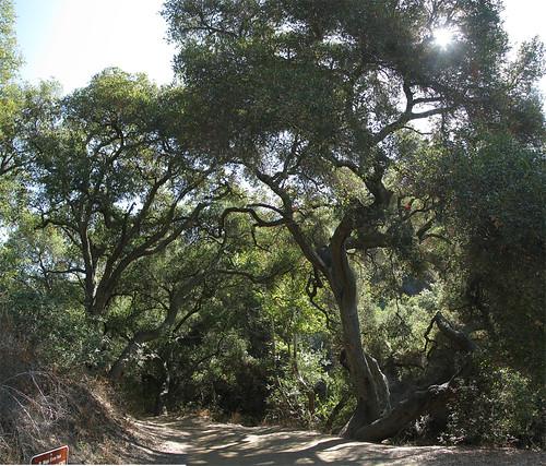 Rancho Panorama 04