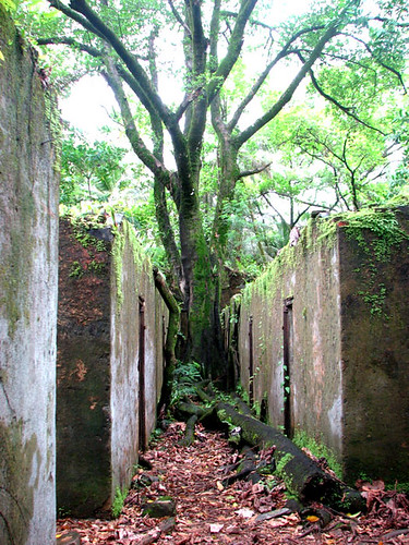 Ruins of the solitary confinement cells in the Île de Saint-Joseph - CC Nicholas Laughlin